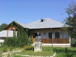 CasaVasileVoiculescu