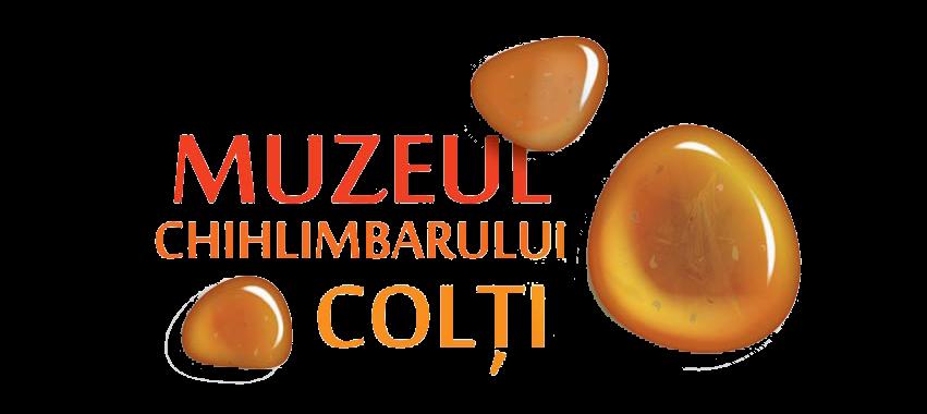 LOGO Muzeul Chihlimbarului Colti